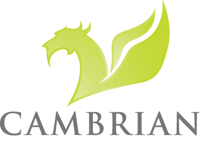 Cambrian Solutions   Ingredient Company, Chemical Supplier