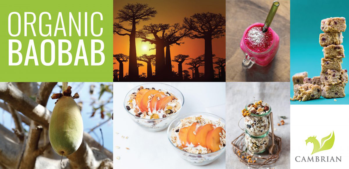 Organic Baobab- image of baobab tree, baobab fruit, a smoothie, a granola, and bars and snacks.