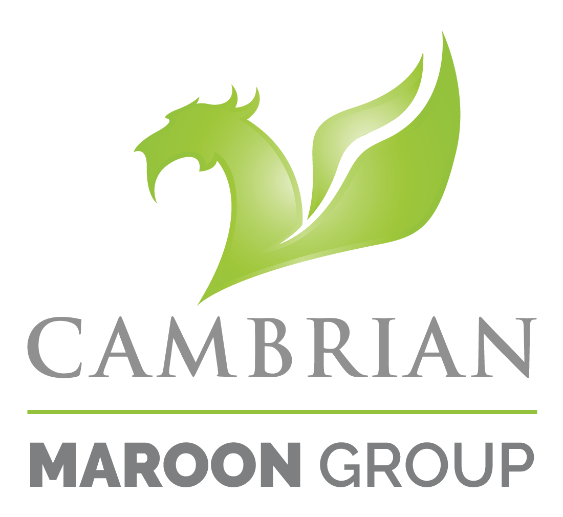 Cambrian Solutions Inc. Logo
