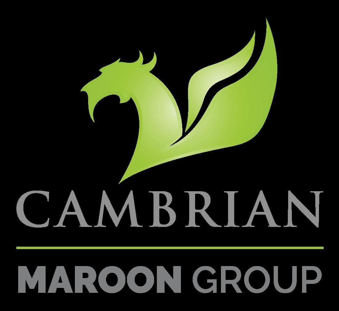 Cambrian Solutions Inc. Logo