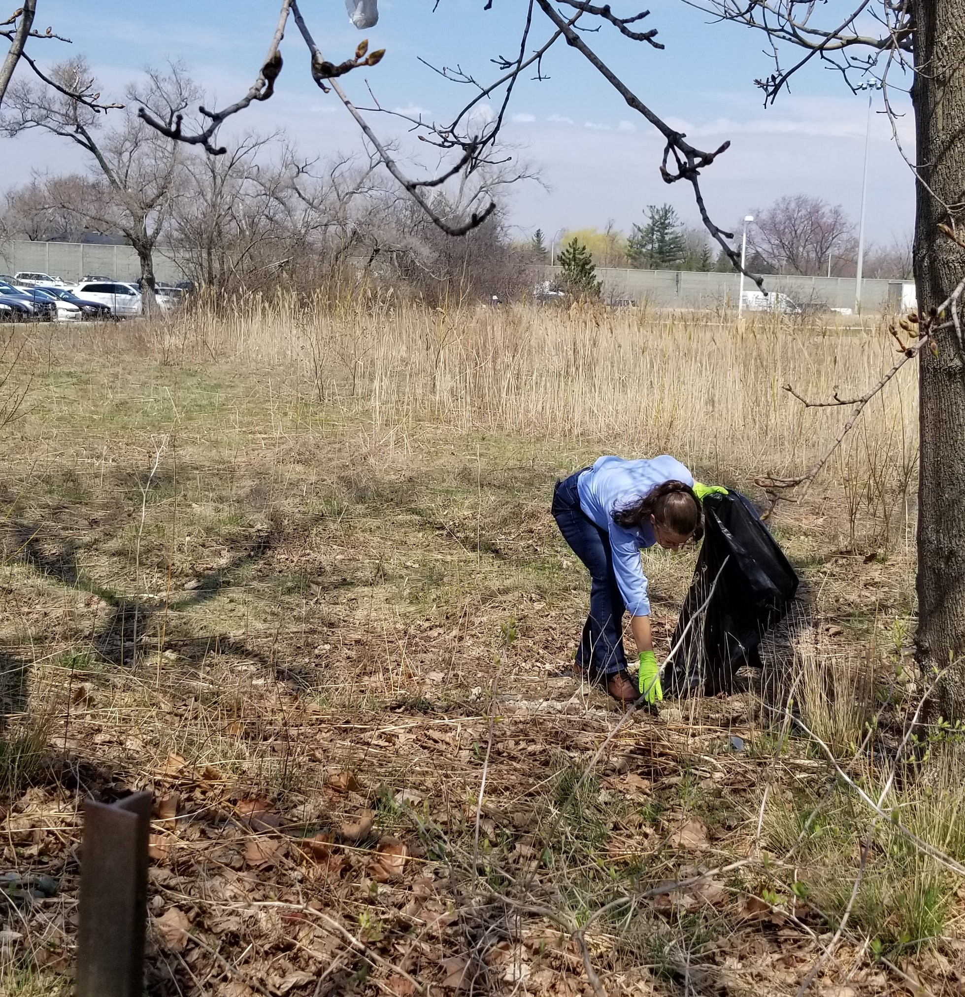 A woman holding a garbage bag bends over to pick up garbage. She is wearing green plastic gloves.