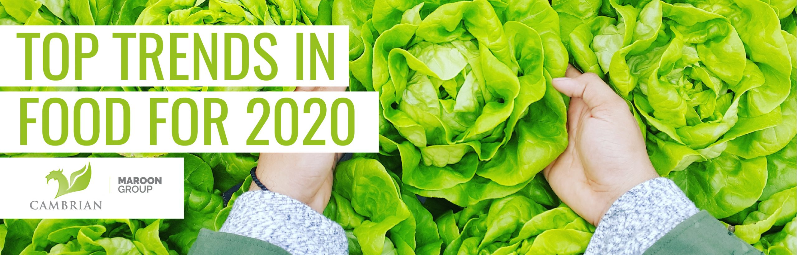"The words ""Top trends in food for 2020"" appear over two caucasian hands holding a head of lettuce among many heads of lettuce"